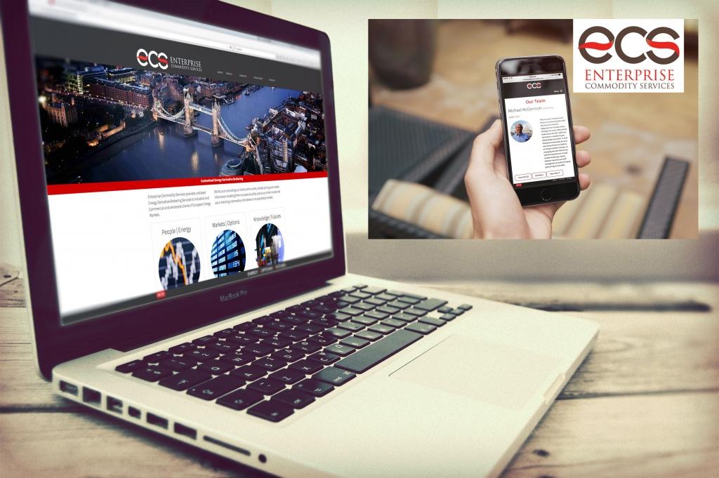 ECS Website