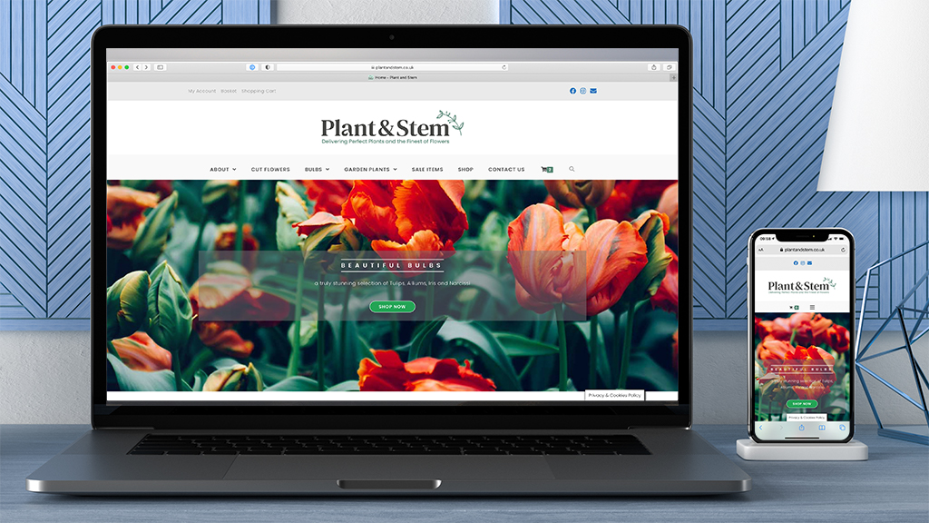 Plant & Stem Website